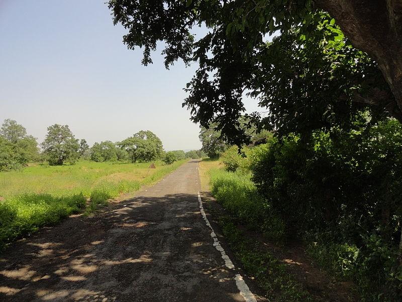 Ratapani National Park